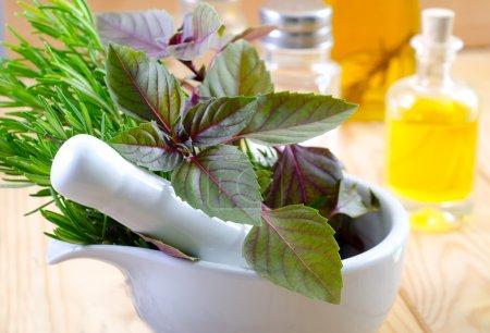 Foto de Verdes de aroma - Imagen libre de derechos
