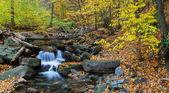 Creek panorama