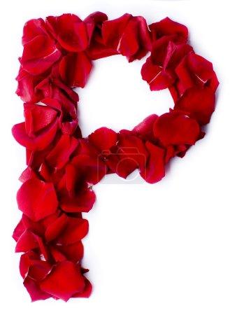 Alfabeto P hecho de rosa roja