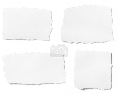 Foto de Colección de blancos arrancó pedazos de papel sobre fondo blanco. cada uno recibe un disparo por separado - Imagen libre de derechos
