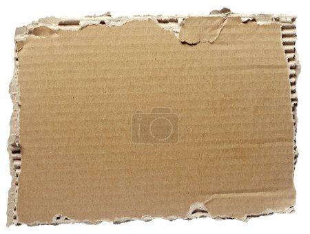 Photo for Close up of a cardboard piece on white background - Royalty Free Image