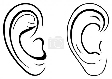 Illustration for Drawing human ear - Royalty Free Image
