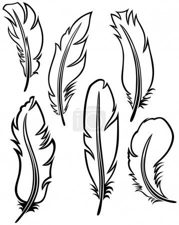 Illustration pour Set de plumes - image libre de droit