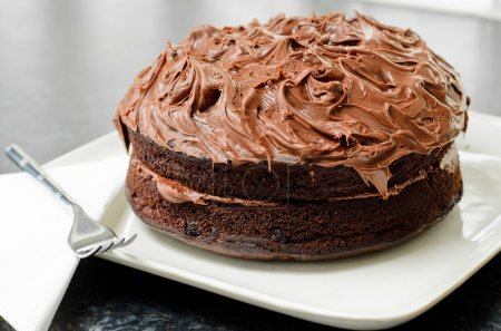 Photo for Fresh, home made chocolate sponge cake covered in chocolate icing. - Royalty Free Image