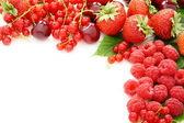 Mix čerstvé letní plody