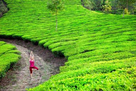 Yoga in tea plantations