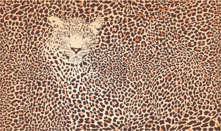 Illustration for Vector illustration pattern background leopard skins and head - Royalty Free Image