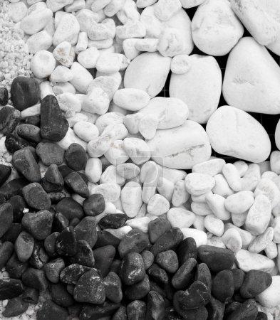 Photo pour Blanc et noir galets ronds pierres fond de gravier - image libre de droit
