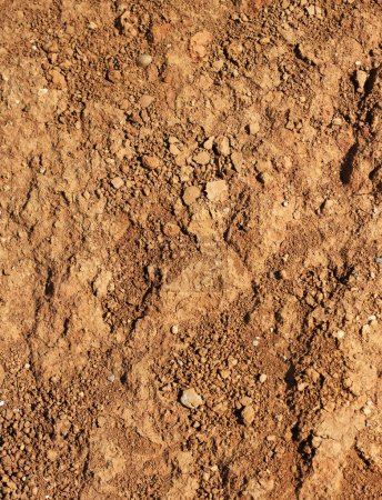 Photo for Dry agricultural brown soil detail natural background - Royalty Free Image