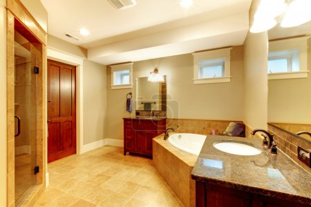 Large bathroom interior with high end quality.