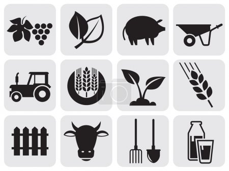 Illustration for Vector agriculture and farming icons. - Royalty Free Image