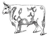 Beef Cuts, vintage engraving