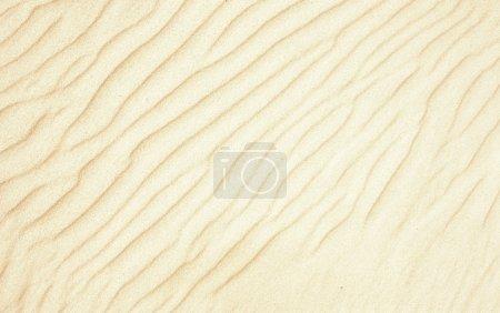 Beautiful sand background