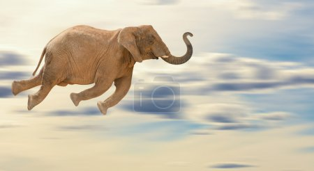 Flying Elephant, Outdoor...