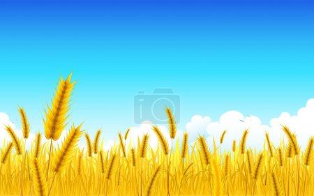 Illustration for Illustration of landscape of golden wheat farm - Royalty Free Image