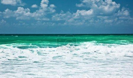 Paysage marin panoramique
