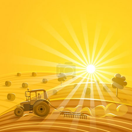 Illustration for Harvesting on the sunny background. Vector illustration - Royalty Free Image