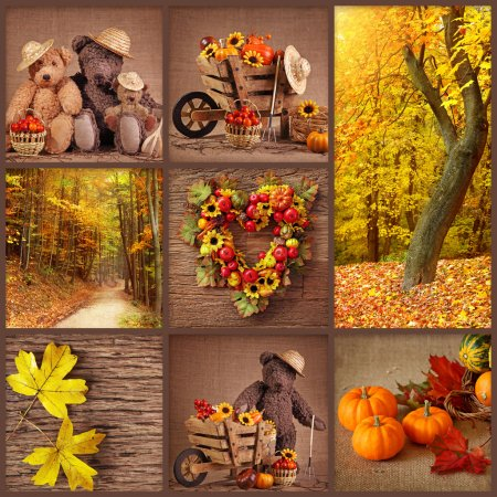 Photo for Colorful autumn collage - Royalty Free Image