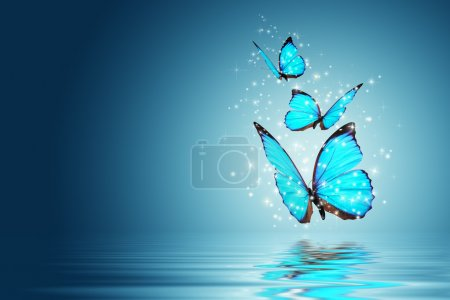 Photo for Blue Magic butterfly over water - Royalty Free Image