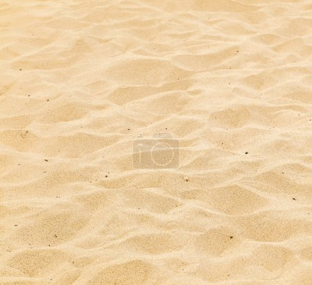 Photo pour Motif de la plage de sable fin dans la matinée avec traces - image libre de droit