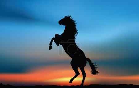 Illustration pour Cheval au coucher du soleil - image libre de droit