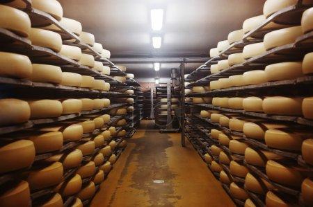 Photo pour Photo d'une usine de fromage en Suisse - image libre de droit