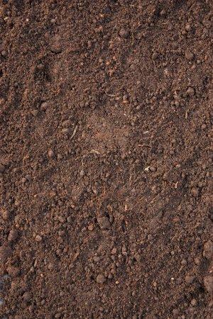 Soil background...