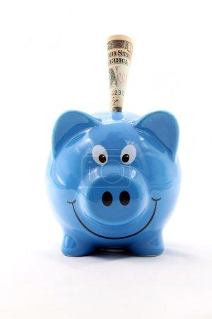 Foto de Cerdito ahorros con nosotros dólar billete cuenta usando por concepto de seguro de ahorro de dinero - Imagen libre de derechos