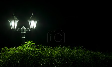 Outdoor Night lamp