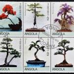 Постер, плакат: ANGOLA CIRCA 2000: Collection stamps shows different bonsai circa 2000