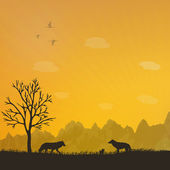 A family of wolves at sunset