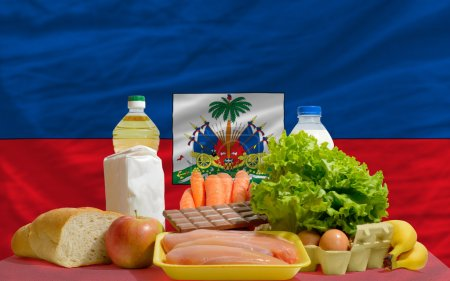 Basic food groceries in front of haiti national flag