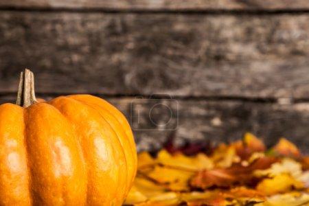 Photo pour Bordure automnale des feuilles de citrouille et d'érable sur fond en bois - image libre de droit