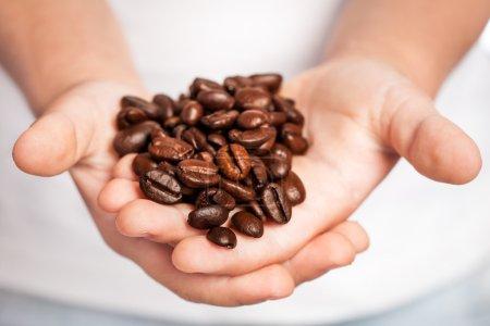 Granos de café en manos de niños