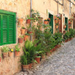 Old houses with flowers in the mediterranean villa...