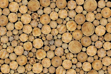 Photo pour Grumes empilées Texture, Fond naturel - image libre de droit