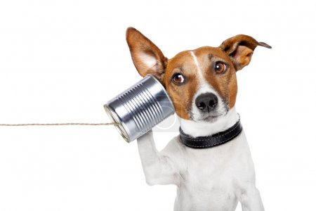 Photo for Dog on the phone with a can - Royalty Free Image