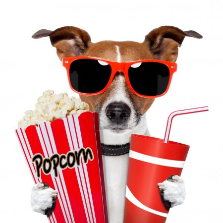 Dog watching a movie with popcorn and coke...