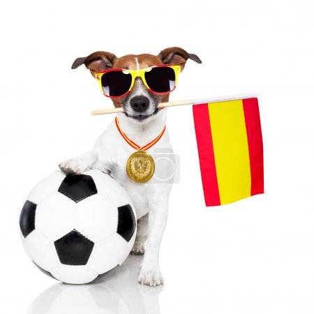 Photo pour Chien comme soccer avec médaille et drapeau - image libre de droit