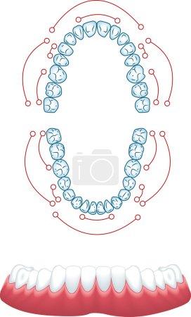 , medical vector illustration...