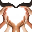 Multiracial human hands making a heart shape on wh...