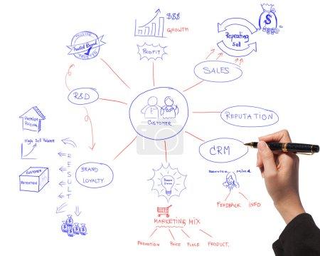 Business women drawing idea board of business proc...