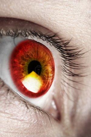 Bright red eye