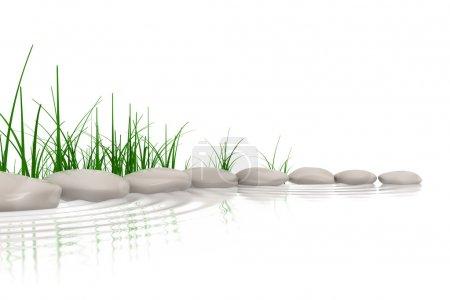 Photo pour Pierres & herbe au bord des eaux - image libre de droit