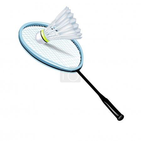 Single badminton racket and shuttlecock