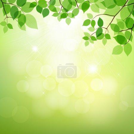 Illustration for Fresh green leaves on natural background. vector illustration - Royalty Free Image