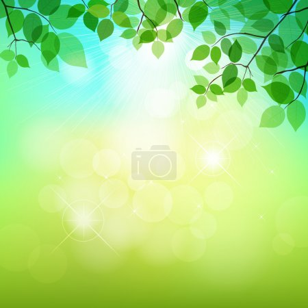 Fresh green leaves on natural background
