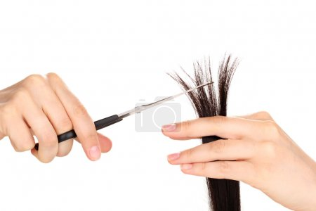 Shiny brown hair in hairdresser's hands isolated on white