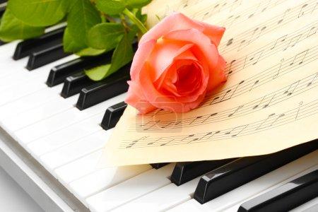 Photo pour Fond de clavier piano avec rose - image libre de droit