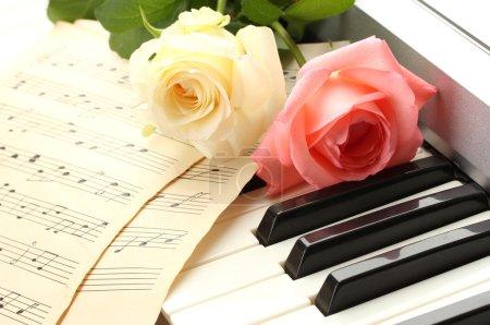 Photo pour Fond du clavier piano avec des roses - image libre de droit